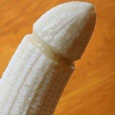 Największy penis świata